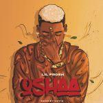 Lil Frosh Oshaa Mp3 Download