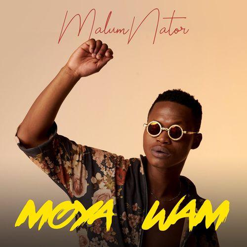 MalumNator – IyPhuzo ft. De Mthuda Ntokzin