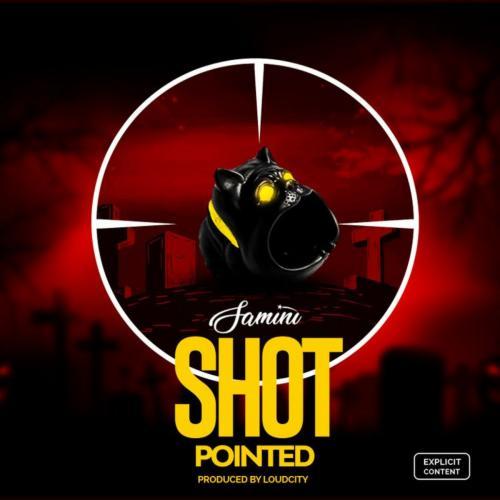 Samini Shot Pointed Shatta Wale Diss