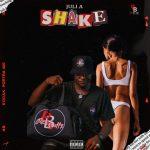 Juli A Shake Mp3 Download