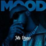 Mr Drew Mood mp3 download