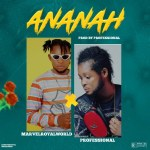 Marvelroyalworld Ft. Professional Ananah Beat mp3 download