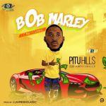 Pituhills Bob Marley mp3 download