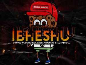 Sponge Wodumo Ibheshu Ft. Mampintsha & Babes Wodumo mp3 download