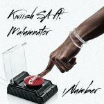 Kwiish SA INumber Ft. MalumNator Mp3 Download