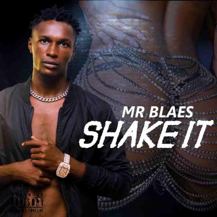 Mr Blaes Shake It mp3 download