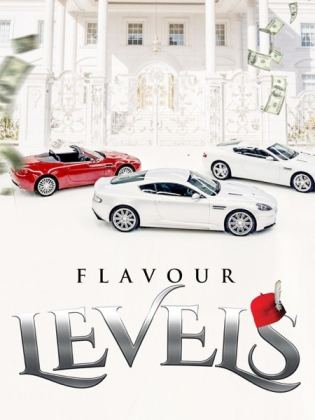 Flavour Levels Mp3 Download
