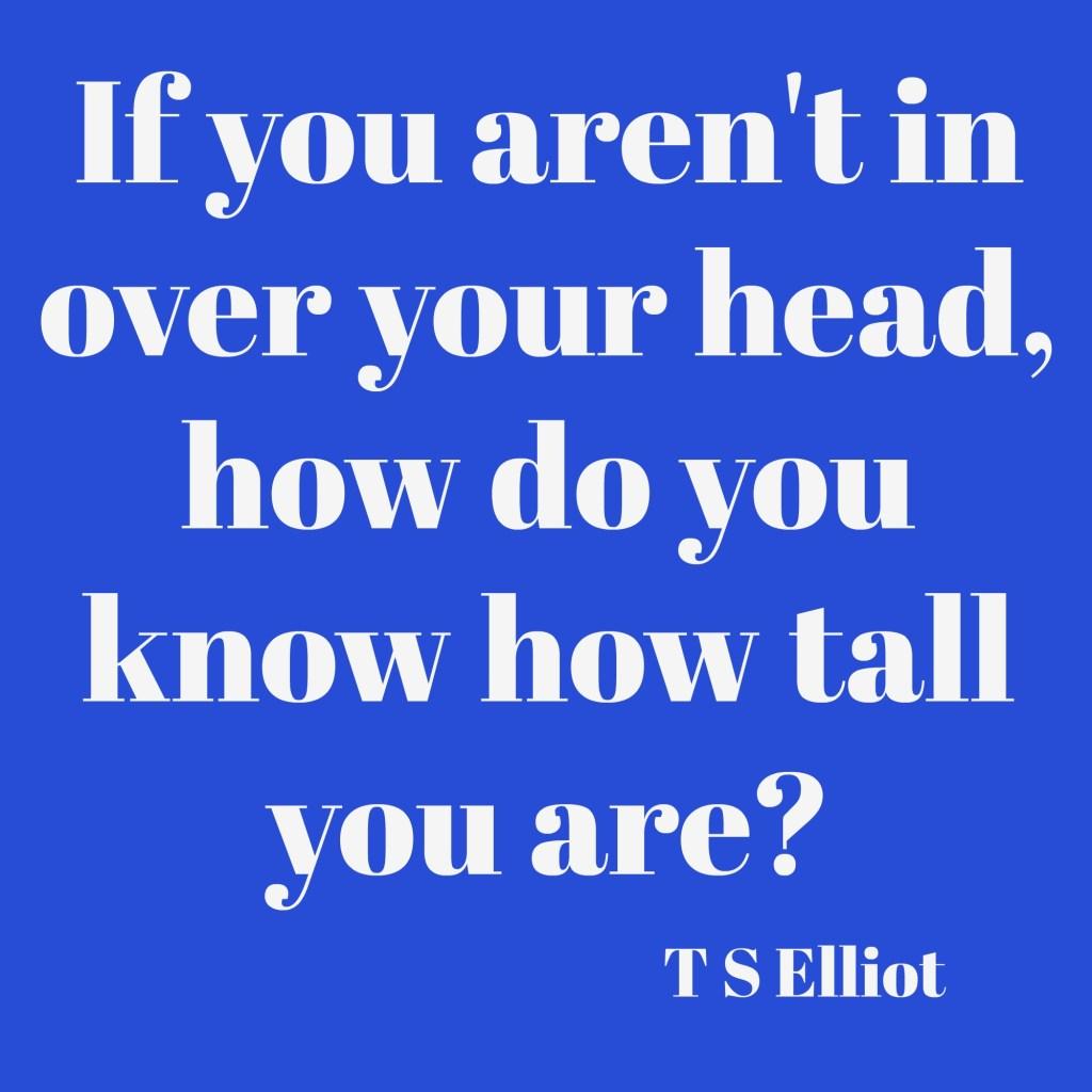 TS Elliot quote