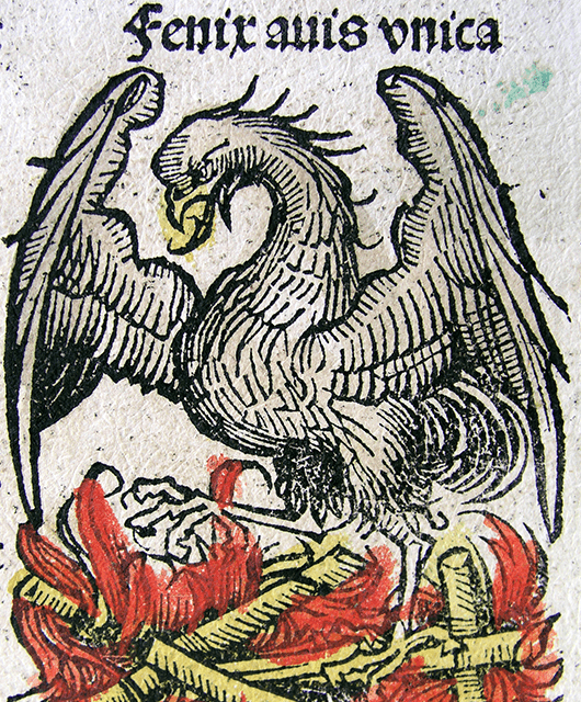 "Phoenix illustration from Hartmann Schedel's ""Nuremberg Chronicle"" (Source: Wikimedia Commons)"