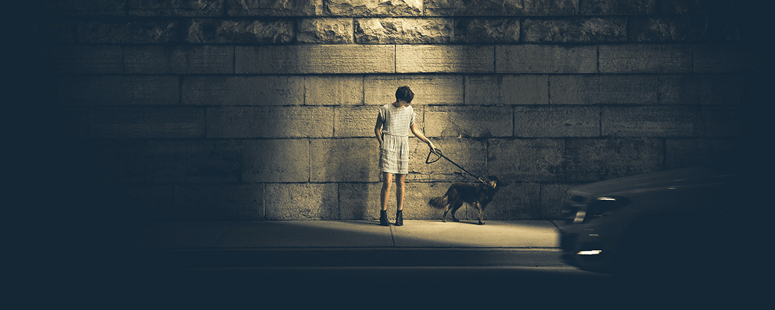 Alone with a Dog