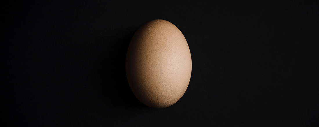 Egg in Black Background