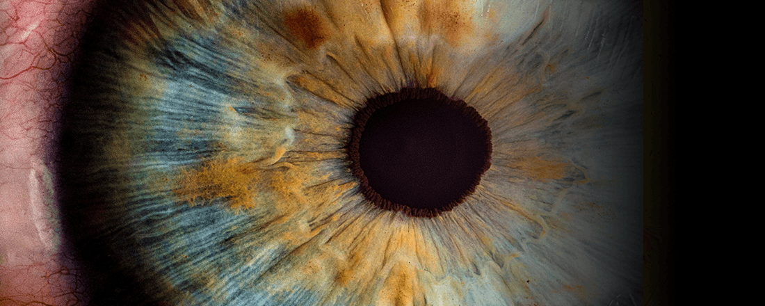 Pupil Zoom
