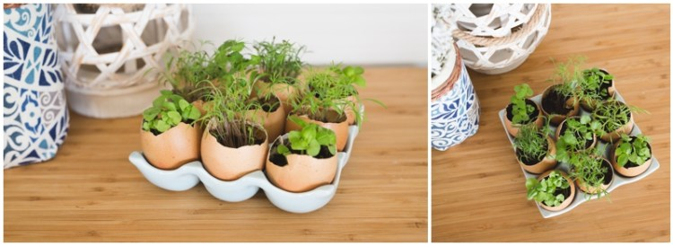 Egg Holder Decoration   Egg Holder   Egg Carton   Farmhouse Decor   Farmhouse Style   Farmhouse Kitchen   Farmhouse Decor   Farmhouse Decor DIY   Inspiration for this cute Egg Holder Decoration on the Six Clever Sisters blog! {Plus a list of stores & prices for ceramic egg holders!}