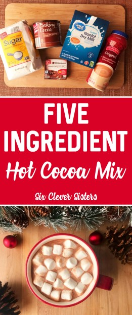 Homemade Hot Cocoa Powder | Homemade Hot Cocoa Recipe | Easy Homemade Hot Cocoa | Homemade Hot Cocoa Recipe Bulk | Homemade Hot Cocoa Dry Mix | Homemade Hot Chocolate | DIY Homemade Hot Cocoa | Homemade Hot Cocoa Recipe for Gifts | Homemade Hot Cocoa Mix Recipe Simple | Homemade Hot Cocoa Easy | The Best Homemade Hot Cocoa | The best homemade hot cocoa mix that tastes delicious and is perfect for gifting! #hotchocolate #drinkrecipes #sixcleversisters