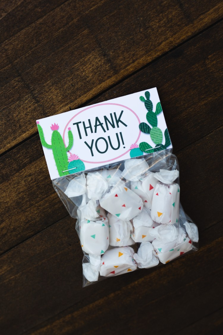 Cactus Party | Cactus Party Decor | Cactus Party Favor Bags | Cactus Party Decoration | Cactus Party Theme | Cactus Party Favors | Cactus Party Favors | Kids Cactus Party Decorations | Cactus Party Favors | Diy Cactus Party Ideas | Cactus Birthday Party | Planning a cactus theme party? These free printable cactus party treat bags are perfect for your fiesta party or cactus baby shower! #cactus #cactusparty #cactuspartyfavors #partyfavors #cactuspartydecor #cactuspartytheme #treatbags #treatbagtoppers #bagtoppers #fiestaparty #sixcleversisters