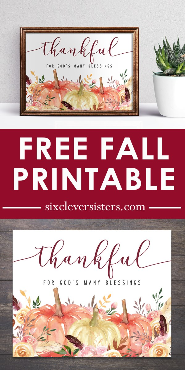 Thankful Printable | Thankful Printable Free | Thankful Quotes | Printable Fall Signs | Printable Fall Decor | Fall Signs DIY Free Printable | Pumpkins + Florals make this printable fall sign gorgeous! Available for free on the Six Clever Sisters blog.