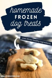 Healthy Homemade Dog Treats | Frozen Dog Treats | Healthy Dog Treats | Homemade Treats for my Dog | Blueberry Frozen Dog Treats | Peanut Butter Dog Treats | Easy Healthy Dog Treat Recipe | Looking for a healthy dog treat recipe for your pup? This one is a simple three-ingredient recipe with no added sugars and makes a tasty cool treat for your pup in the summer. Find the recipe at SixCleverSisters.com.