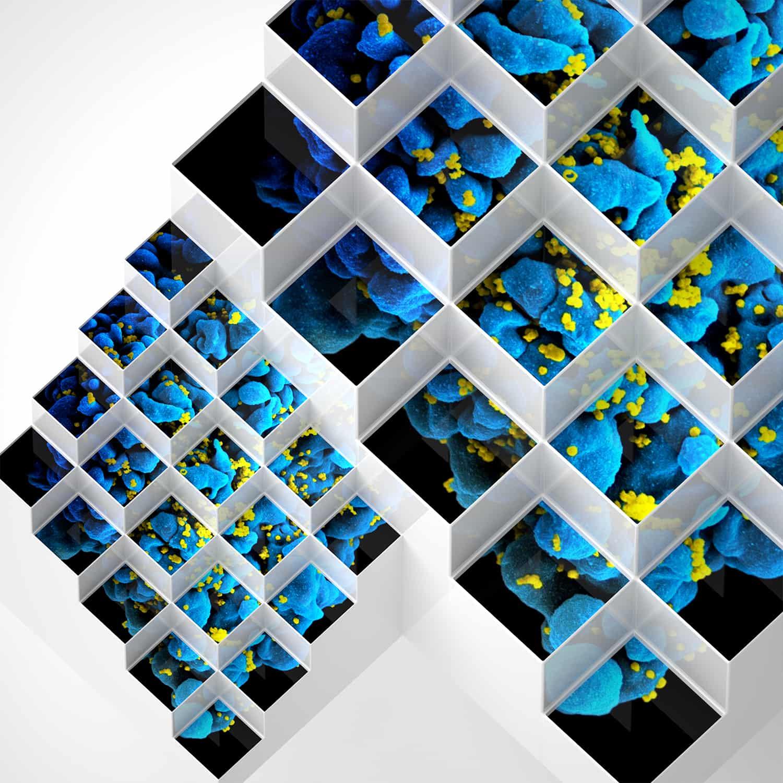 Bluetech – Liquid Geometries In Dub