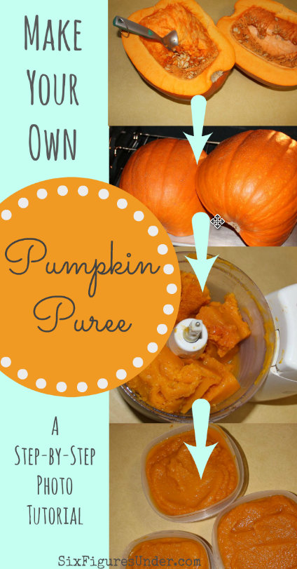 Make your own pumpkin puree from regular pumpkins with this step-by-step photo tutorial. You'll never go back to canned pumpkin again!