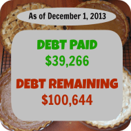 November 2013- Debt Repayment Progress Report