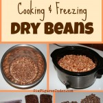 Cooking and Freezing Dry Beans