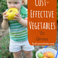 Our Favorite Cost-Effective Vegetables to Grow