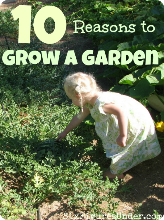 Growing a garden might sound like a lot of work (and it is), but there are lots of great reasons to grow a garden (or at least grow something)! Here are ten reasons to get planting!