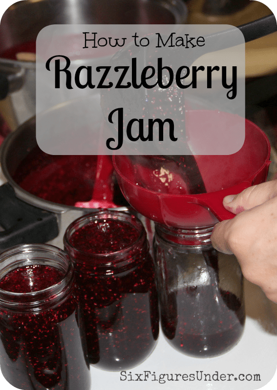 A cross between raspberry jam and blackberry jam is better than either flavor alone.  Here's a step-by-step tutorial to make Razzleberry Jam and can it too!
