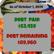 September 2014 Debt Repayment Progress Report