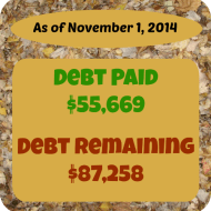 October 2014 Debt Repayment Progress Report