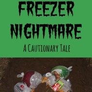 Our Freezer Nightmare: A Cautionary Tale