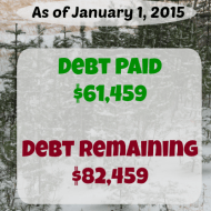 December 2014 Debt Repayment Progress Report