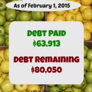 January 2015 Debt Repayment Progress Report