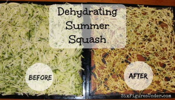 Dehydrating Summer Squash- before and after