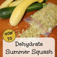 How to Dehydrate Zucchini and Yellow Squash