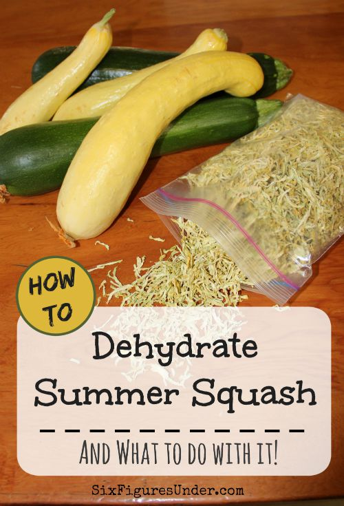 How to dehydrate zucchini and yellow squash six figures under if youve got zucchini or yellow squash growing in your garden you probably forumfinder Images