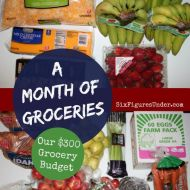 A Month of Groceries for the SixFiguresUnder Family