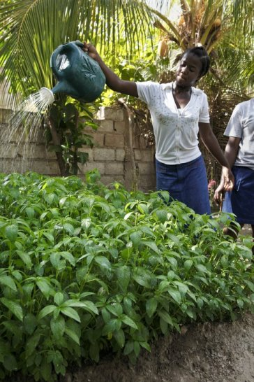 Give a gift of lasting change by providing a family vegetable garden for a poor family in a developing nation