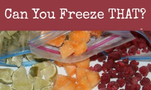 Can you freeze THAT?
