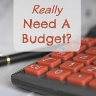 Do I Really Need a Budget?