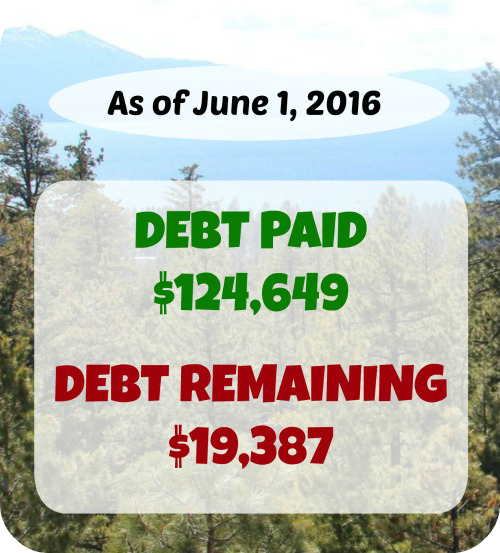 Want to see what one family earns, spends, and pays in debt in a month? Here's a transparent look into another family's finances!