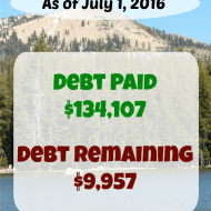 June 2016 Debt Repayment Progress Report