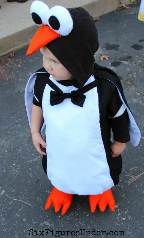 two-year-old-penguin