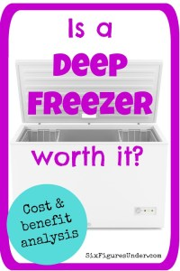 Is a deep freezer worth it?