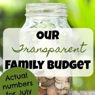 Family Budget Update– July 2017