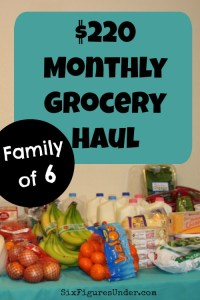 Monthly Grocery Shopping Trip Notes and Video– February