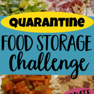 Quarantine Food Storage Challenge- Update 5