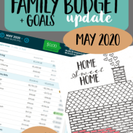 Real Family Budget Update– May 2020