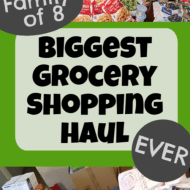 Biggest Grocery Haul EVER– June 2020