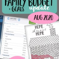Real Family Budget Update – August 2020